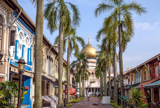 Kampong Glam Sultan mosque Palm Trees Shophouses
