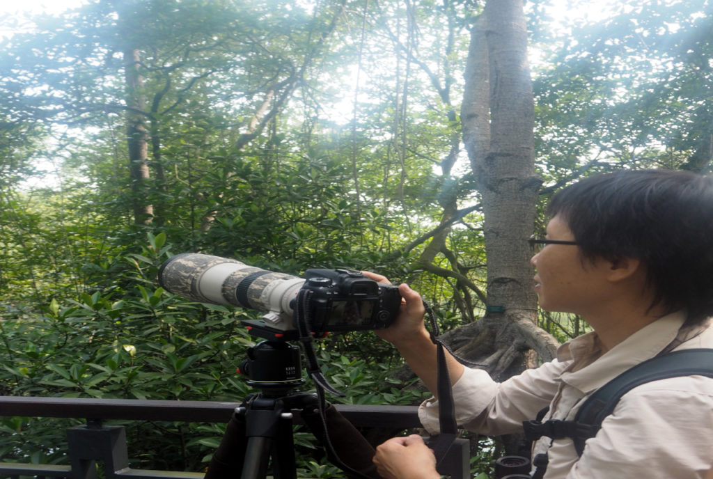 Naturally Singapore Sungei Buloh Photographer