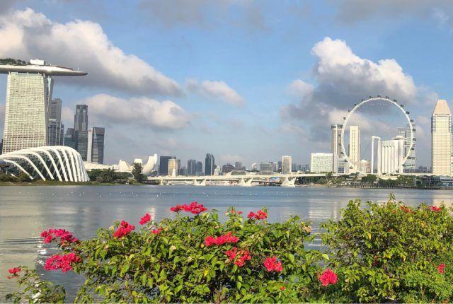 Singapore Architecture Skyline