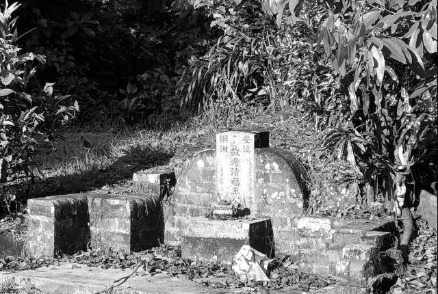Bukit Brown Cemetery walk